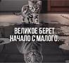 Инвестиции , бизнес сотрудничество . объявление из г.Новоалтайск